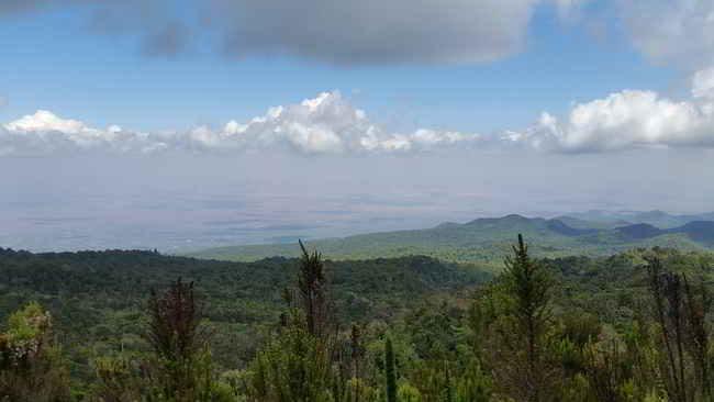 Kilimanjaro Aussicht